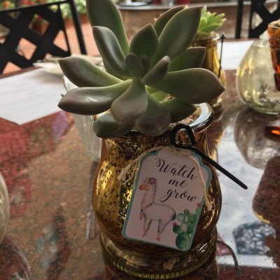 Marie Baby Shower (party favor), Sept 3rd, 2017